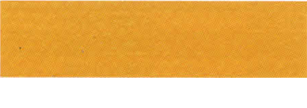 Canson Mi-Teintes Paper 19X25 10 Pack Cad Yellow Deep 553