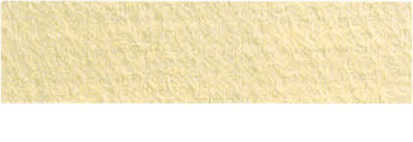 Canson Mi-Teintes Paper 19X25 10 Pack Champagne 470