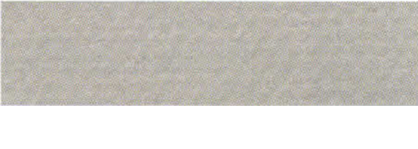 Canson Mi-Teintes Paper 19X25 10 Pack Flannel Gray 122