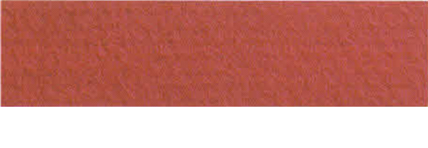 Canson Mi-Teintes Paper 19X25 10 Pack Red 505