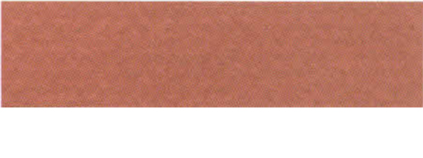 Canson Mi-Teintes Paper 19X25 10 Pack Red Earth130