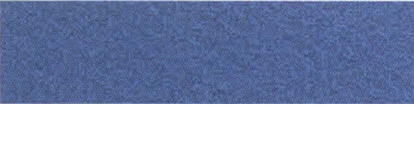 Canson Mi-Teintes Paper 19X25 10 Pack Royal Blue 590