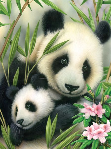 Royal & Langnickel Painting by Numbers 8 3/4 x 11 3/8 Junior Small Set Panda & Baby