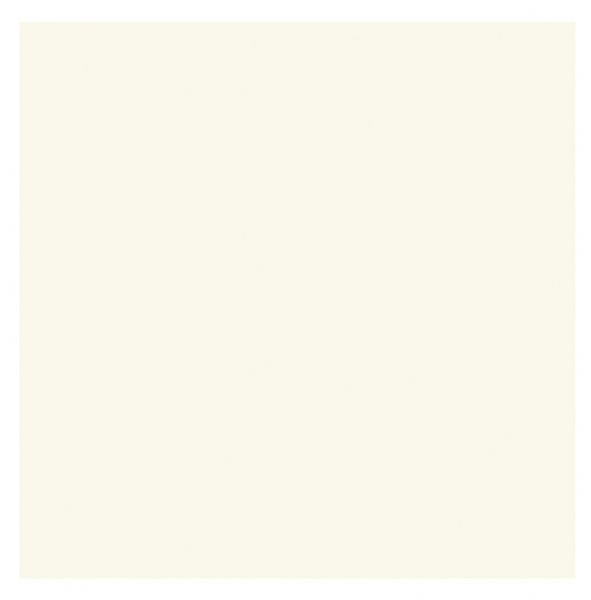 5 x 6.875 Palm Beach Plain Edge Creative Cards 50-Pack