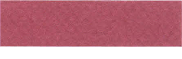 Canson Mi-Teintes Paper 19X25 10 Pack Raspberry 114