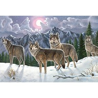 Royal & Langnickel Painting by Numbers 12 3/4 x 15 3/4 Adult Set Wolves