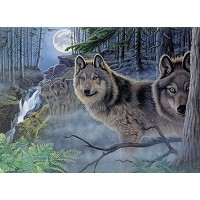 Royal & Langnickel Painting by Numbers 12 3/4 x 15 3/4 Adult Set Mystical Moonlight