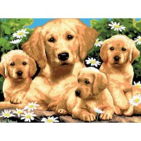 Royal & Langnickel Painting by Numbers 11 1/4 x 15 3/8 Junior Large Set Golden Retriever