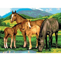 Royal & Langnickel Painting by Numbers 11 1/4 x 15 3/8 Junior Large Set Horses & Foals
