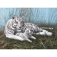 Royal & Langnickel Painting by Numbers 11 1/4 x 15 3/8 Junior Large Set White Tigers