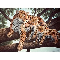 Royal & Langnickel Painting by Numbers 11 1/4 x 15 3/8 Junior Large Set African Leopard & Cubs
