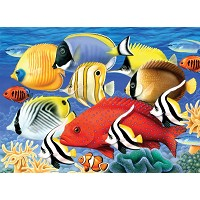 Royal & Langnickel Painting by Numbers 11 1/4 x 15 3/8 Junior Large Set Tropical Fish