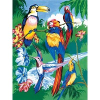 Royal & Langnickel Painting by Numbers 8 3/4 x 11 3/8 Junior Small Set Tropical Bird