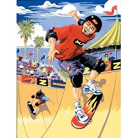 Royal & Langnickel Painting by Numbers 8 3/4 x 11 3/8 Junior Small Set Skateboarder