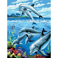 Royal & Langnickel Painting by Numbers 8 3/4 x 11 3/8 Junior Small Set Dolphins