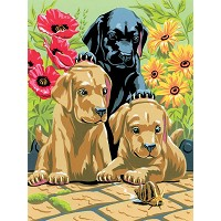 Royal & Langnickel Painting by Numbers 8 3/4 x 11 3/8 Junior Small Set Labrador Pups