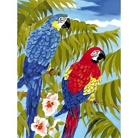 Royal & Langnickel Painting by Numbers 8 3/4 x 11 3/8 Junior Small Set Parrots