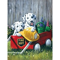 Royal & Langnickel Painting by Numbers 8 3/4 x 11 3/8 Junior Small Set Fire Waggin