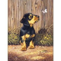 Royal & Langnickel Painting by Numbers 8 3/4 x 11 3/8 Junior Small Set Dachshund Pup