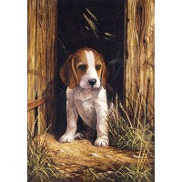 Royal & Langnickel Painting by Numbers 8 3/4 x 11 3/8 Junior Small Set Beagle Puppy