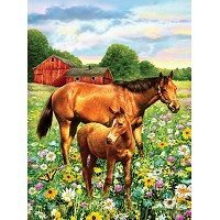 Royal & Langnickel Painting by Numbers 8 3/4 x 11 3/8 Junior Small Set Horses In Field