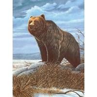 Royal & Langnickel Painting by Numbers 8 3/4 x 11 3/8 Junior Small Set Grizzly Bear