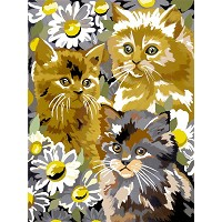 Royal & Langnickel Painting by Numbers 8 3/4 x 11 3/8 Junior Small Set Kittens & Daises