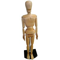 Life Size Male Drawing Manikin